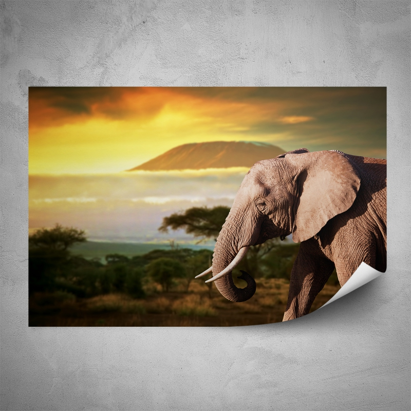 Plakáty - Plakát - Kilimandžáro