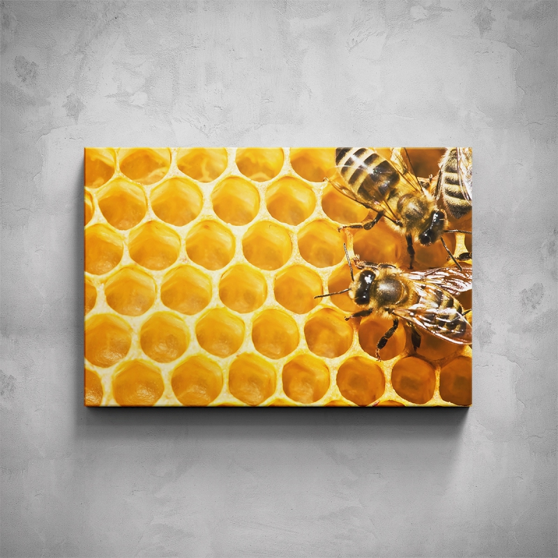Obrazy - Obraz - Včely