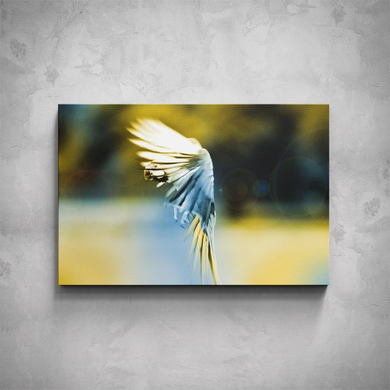 Obrazy - Obraz - Papoušek