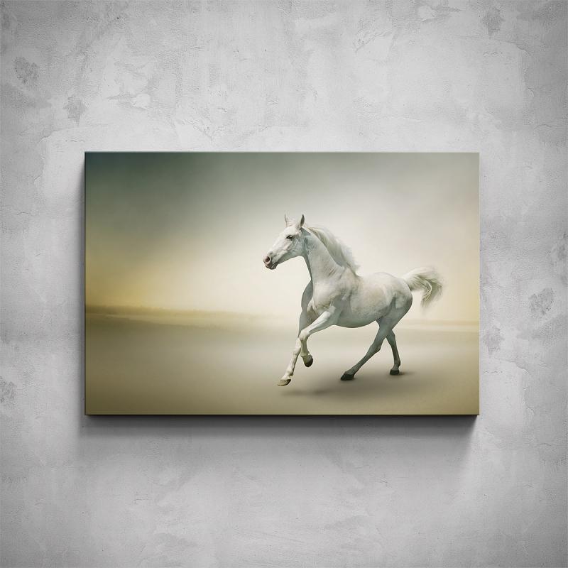 Obrazy - Obraz - Bílý kůň