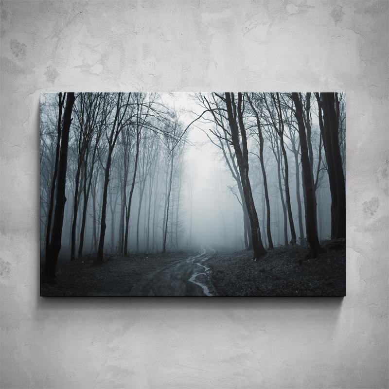 Obrazy - Obraz - Strašidelný les