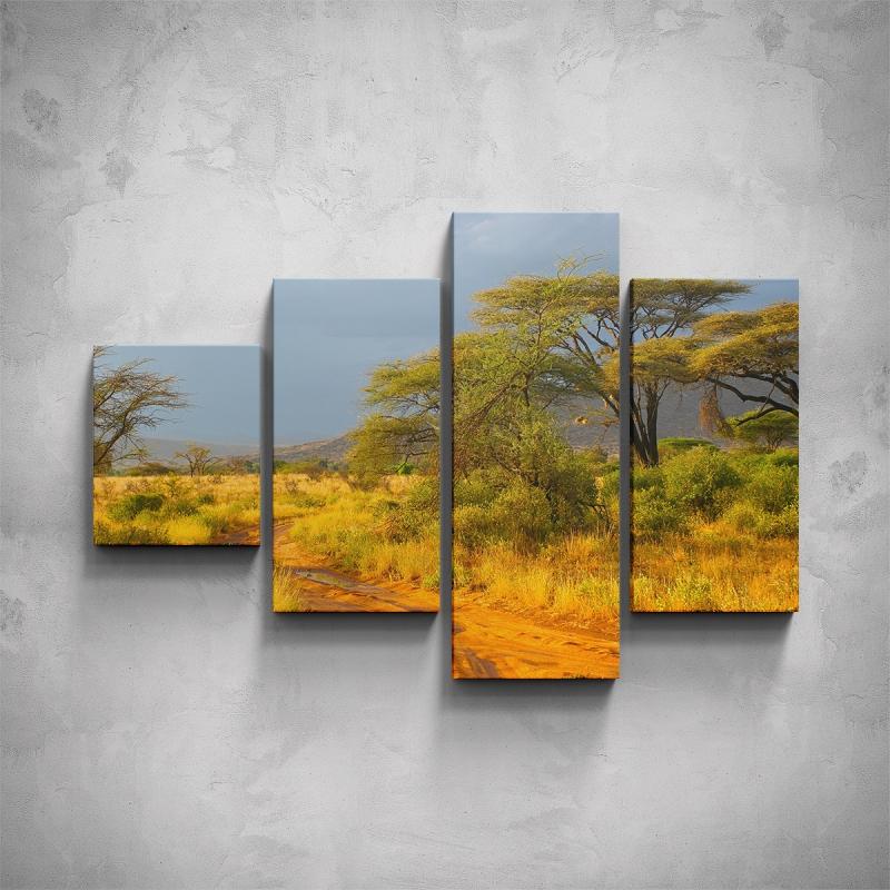 Obrazy - 4-dílný obraz - Africká příroda
