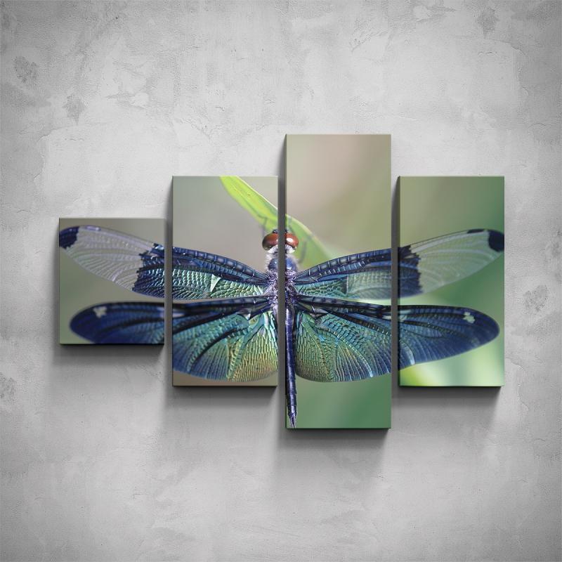 Obrazy - 4-dílný obraz - Vážka