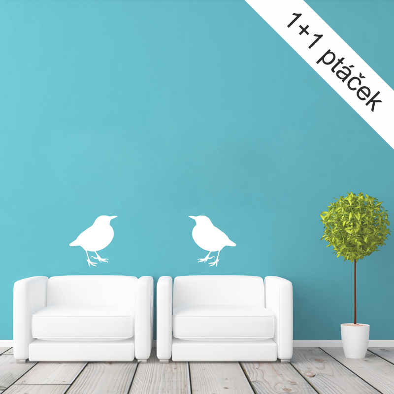 Samolepky na zeď - Samolepka na zeď - Ptáček kos 1+1 zdarma