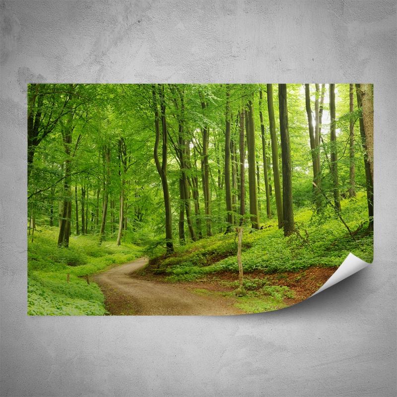 Plakáty - Plakát - Cesta lesem