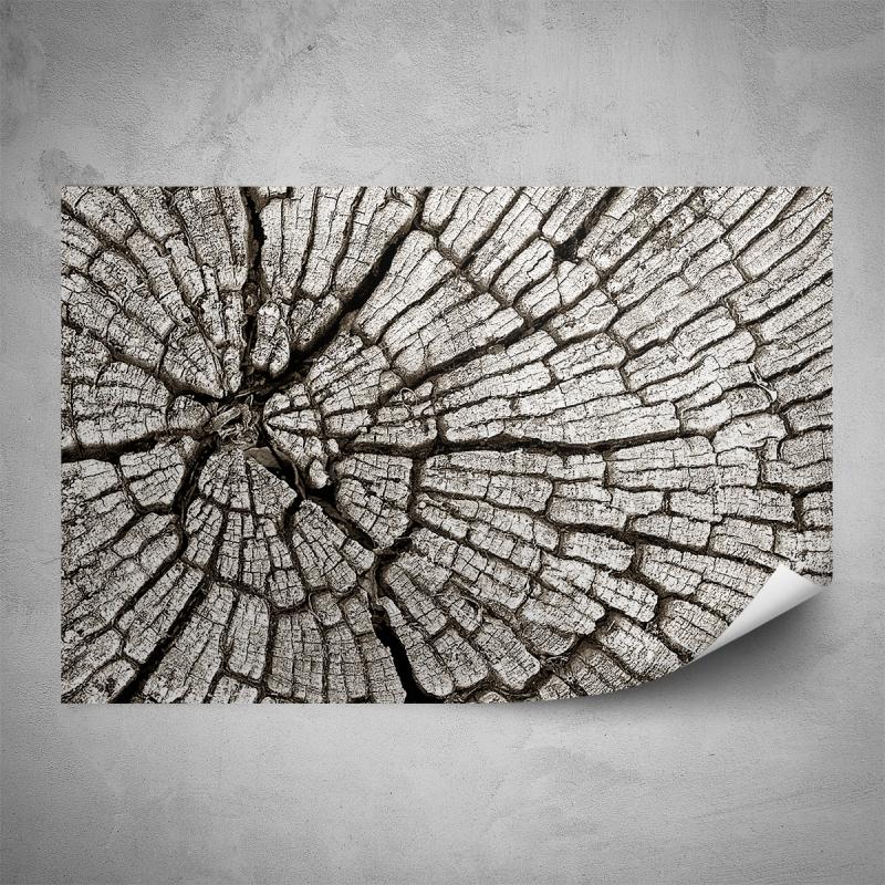 Plakáty - Plakát - Popraskané dřevo