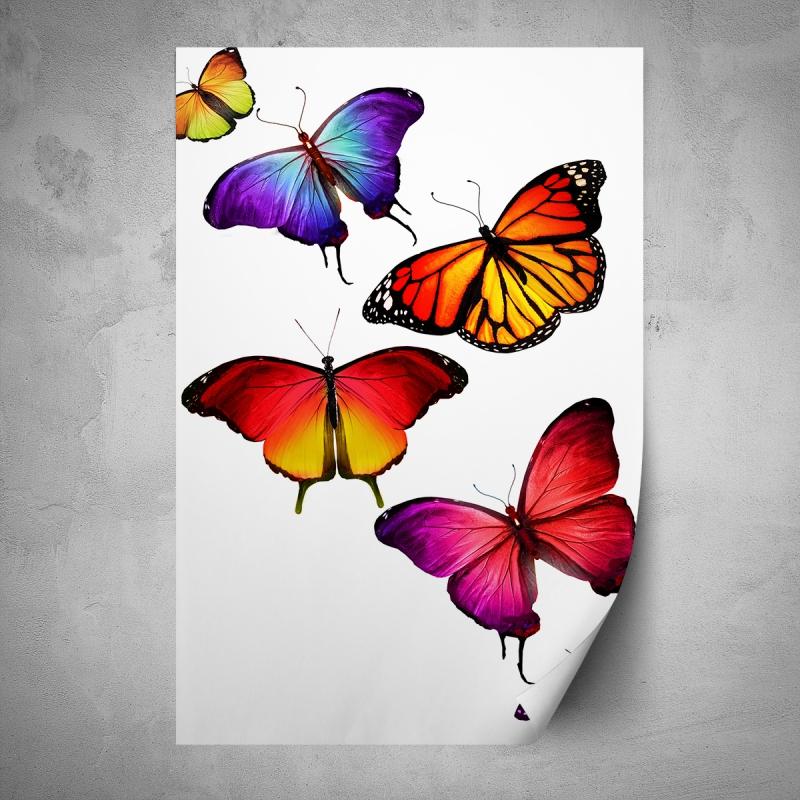 Plakáty - Plakát - Barevní motýli