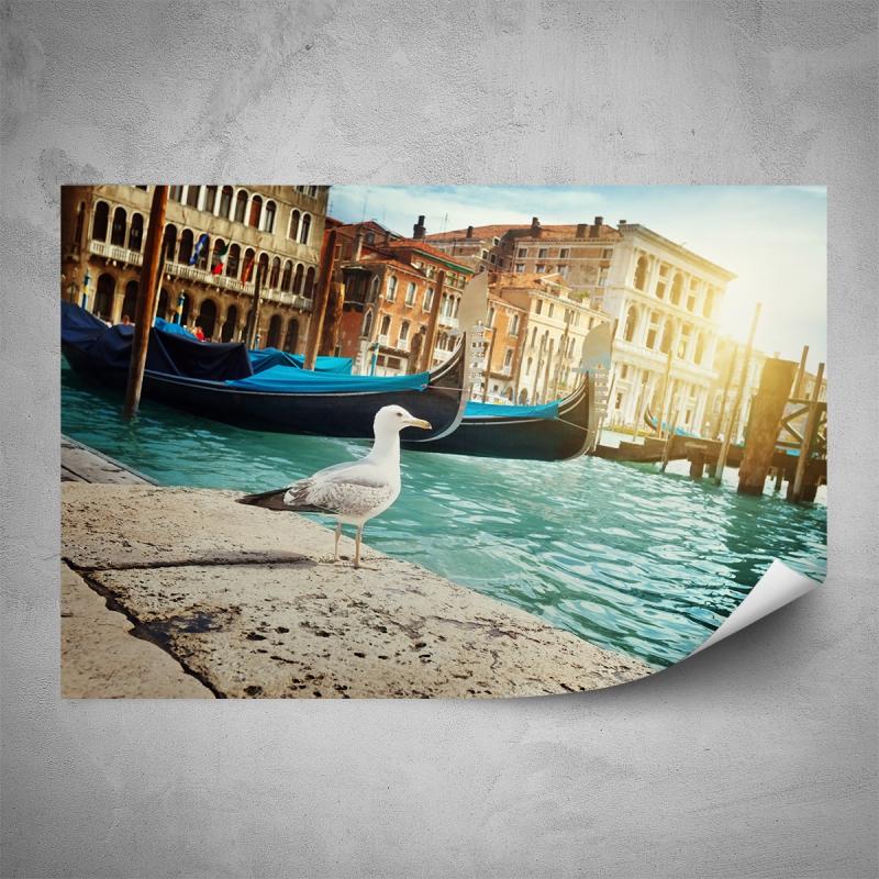 Plakáty - Plakát - Racek v Benátkách