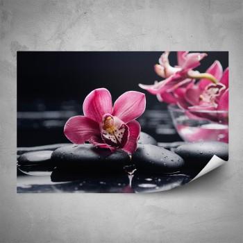 Plakát - Květy orchideje