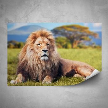 Plakát - Král zvířat