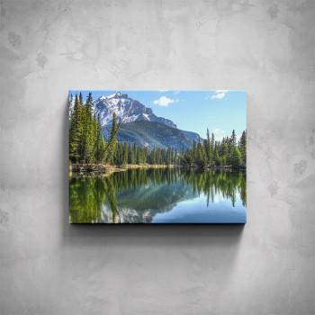Obraz - Lesní jezero