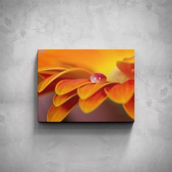 Obraz - Kapka na květu