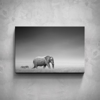 Obraz - Slon a zebra