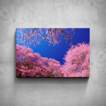 Obraz - Kvetoucí stromy