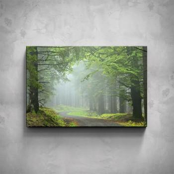 Obraz - Lesní cesta