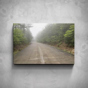 Obraz - Silnice