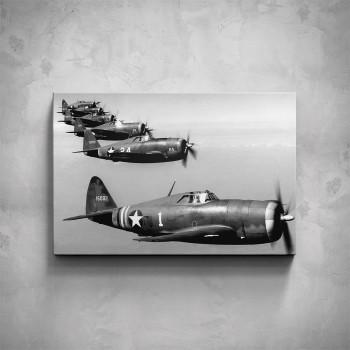 Obraz - Vojenská letka