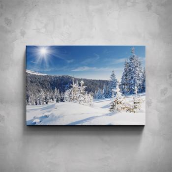 Obraz - Zima