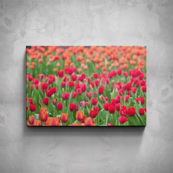 Obraz - Tulipány
