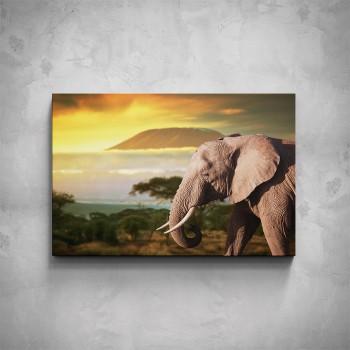 Obraz - Slon