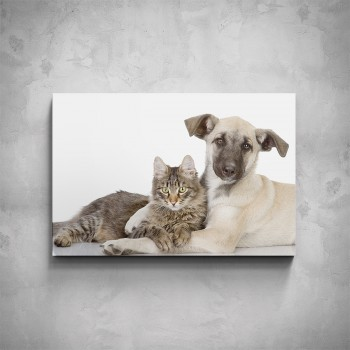 Obraz - Pejsek s kočičkou