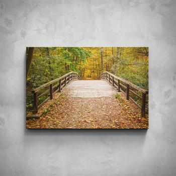 Obraz - Lesní park
