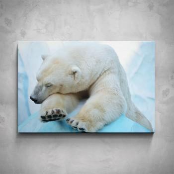 Obraz - Lední medvěd