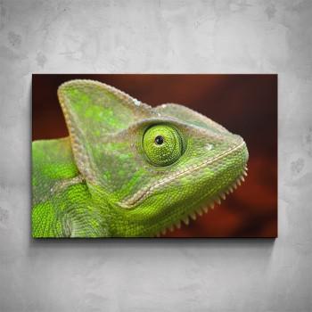 Obraz - Chameleon