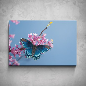 Obraz - Modrý motýl