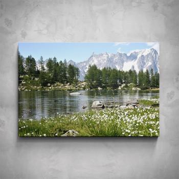 Obraz - Horská řeka