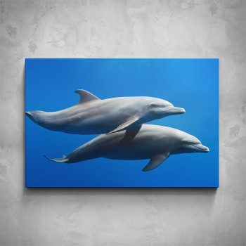 Obraz - Delfíni