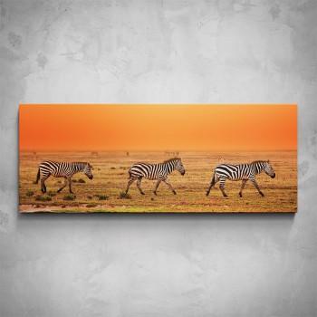 Obraz - Afrika Zebry