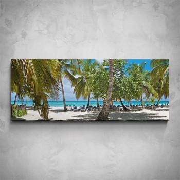 Obraz - Palmová pláž