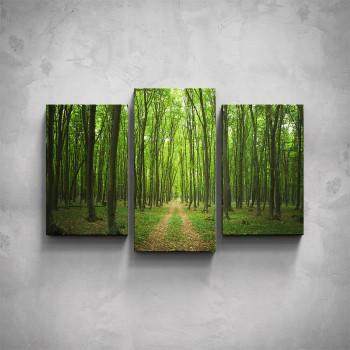 3-dílný obraz - Lesní cesta