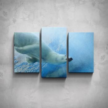 3-dílný obraz - Lední medvěd