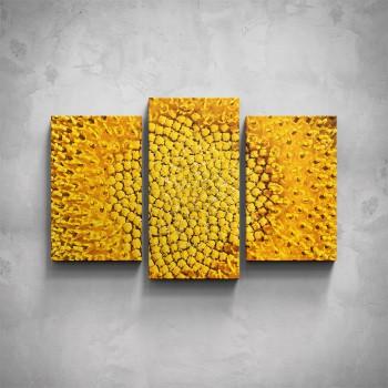 3-dílný obraz - Žlutý květ