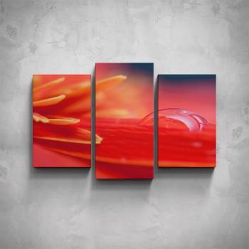 3-dílný obraz - Červený květ