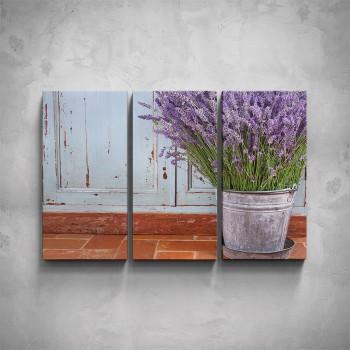 3-dílný obraz - Levandule v květináči
