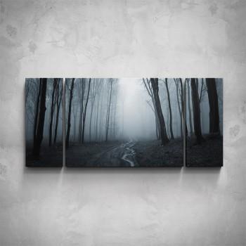 3-dílný obraz - Les v mlze