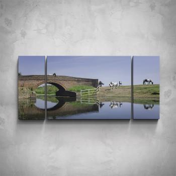 3-dílný obraz - Koně na pastvě