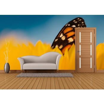 Tapeta - Motýl v květu