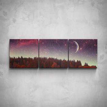 3-dílný obraz - Noc nad lesem