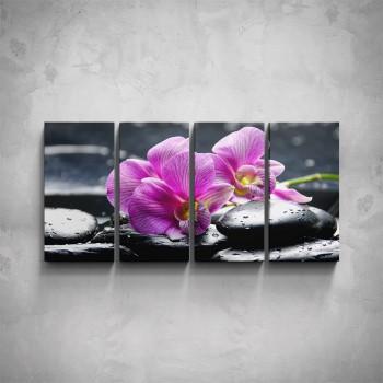 4-dílný obraz - Květy orchidejí