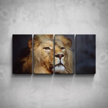 4-dílný obraz - Hlava lva