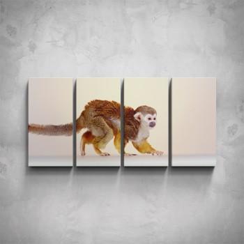4-dílný obraz - Opička