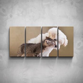 4-dílný obraz - Pes a kotě