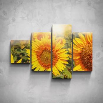 4-dílný obraz - Slunečnice