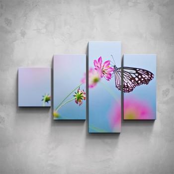 4-dílný obraz - Luční motýl