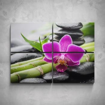 4-dílný obraz - Fialová orchidej