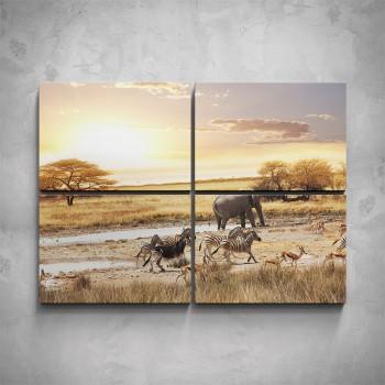 4-dílný obraz - Africká zvířata